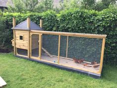 Chicken Coop Large, Chicken Pen, Rabbit Hutches, Animal House, Chickens Backyard, Quail, Garden Planning, Farm Life, Mother Earth