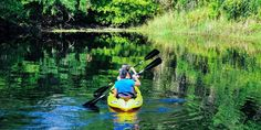 "The Paddling Center at Shingle Creek! Bid. Win. Enjoy! Shingle Creek is headwaters of the Everglades and was recently rated one of the top paddling trails in Florida by Johnny Molloy, adventure writer and co-author of ""Canoeing and Kayaking Florida."""