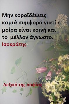 Words Quotes, Wise Words, Me Quotes, Sayings, Special Quotes, Greek Quotes, Picture Quotes, Philosophy, Cool Photos