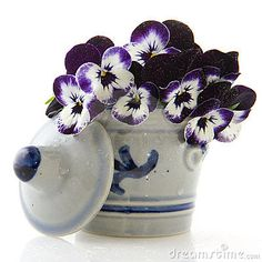 Pansies Stock Photos – 1,899 Pansies Stock Images, Stock Photography & Pictures - Dreamstime - Page 3
