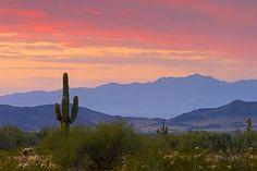Phoenix/ Scottsdale, Arizona