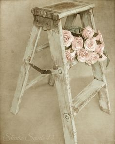 french cottage still life...vintage step stool and pink roses