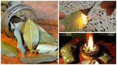 Bay leaves or laurel leaves are mostly used for cooking and they are used worldwide in different cuisines. Here's what happens if you burn a bay leaf at home and wait a few minutes. Home Remedies, Natural Remedies, Homeopathic Remedies, Burning Bay Leaves, New Age Books, O Ritual, Laurel Leaves, Healthy Tips, Candle Jars