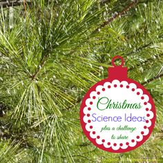 Challenge and Discover: Christmas Science Ideas for Kids