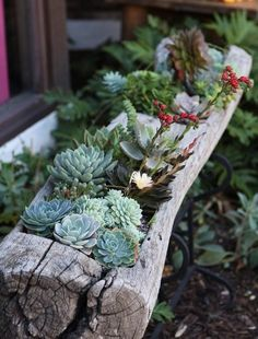 ideas for flower beds1