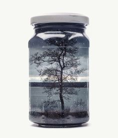 New Finnish Landscapes Captured Within Jars by Christoffer Relander | Colossal