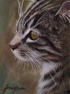 Beautiful , whiskery kitten . Artist Paul Lovering . Deviant Art