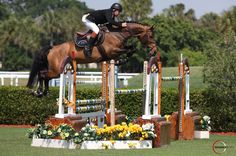 The Winter Equestrian Festival jumps to Wellington | Palm Beach Illustrated