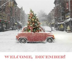 welcomedecember welcome, december