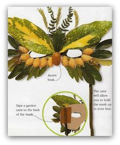 make an owl mask using items from  nature