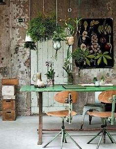 Adding green plants enlivens the space and adds that extra dash of colour to an otherwise very industrial scheme.
