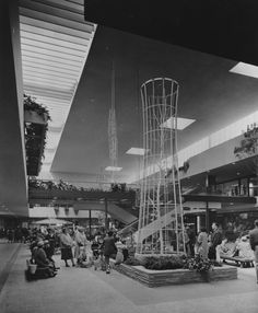 Who remembers the giant birdcages at Southdale Mall?or the fishpond, that I fell in? Edina Minnesota, Miss Minnesota, Feeling Minnesota, Minnesota Home, Duluth Minnesota, Minneapolis, Toulouse, White Bear Lake, Twin Cities