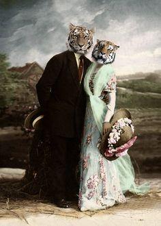 Burt and Loni - Vintage Tiger Print - Anthropomorphic - Altered Photo - Tiger Art - Photo Collage - Gift Idea - Whimsical Art Photo Collage Gift, Photo Art, Photomontage, Fancy Shop, Wildlife Decor, Tiger Art, Wow Art, Human Art, Animal Heads