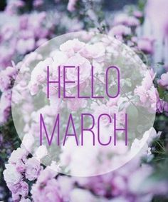 Today is the first day to a new month! I'm hoping to crush some goals this month and finish it off strong with a.