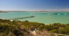 Blessed with everything from secret, stunning beaches to amazing bird and animal life and one gorgeous lagoon, the West Coast National Park has it all.
