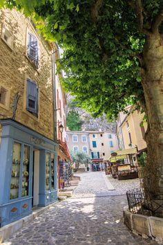 Valensole Provence-Alpes-Côte d'Azur