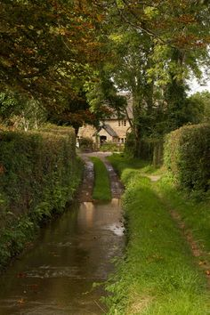 Crewkerne, Somerset, England (by abritton Hull/Mitchell ancestors came from Crewkerne to Massachusetts. River Cottage, Cottage In The Woods, Shetland, Somerset England, British Countryside, Nature Aesthetic, Foto Art, Country Life, Places To Go