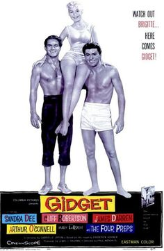 I used to watch Gidget all the time when I was a kid! Moondoggie still has my heart!