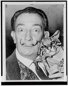 Pablo Picasso, Andy Warhol, Frida Kahlo. So many great artists have one very furry thing in common: cats. Gathered here for the first (furst?) time by editor Alison Nastasi are behind-the-scenes stories of more than fifty famous artists and their feline friends. From Salvador Dali's pet ocelot Babou to John Lennon and Yoko Ono's menagerie of cats, Artists and Their Cats from Chronicle Books captures these endearing friendships in charming photographs and engaging text. Details - Dimensions…
