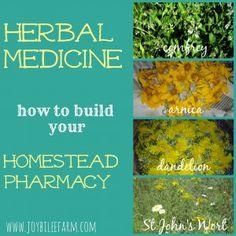 how to build your homestead pharmacy~JoybileeFarm