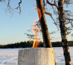 Outdoor candle Finnish candle swedish torch by Finnishcandle, Outdoor Candles, Outdoor Decor, Outdoor Living, Fire Torch, Fire Bowls, Candels, Plein Air, Helsinki, Box Design
