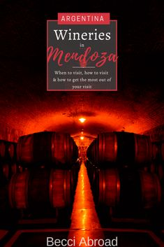 No visit to Mendoza (Argentina) without visiting the wineries of Mendoza. These 8 practical tips will help you get the most out of your visit to the wineries in - Becci Abroad Croatia Travel, Thailand Travel, Italy Travel, Bangkok Thailand, Visit Argentina, Argentina Travel, Different Types Of Wine, South America, Latin America