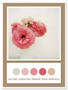Colour Palette: old ivory, powder pink, primrose, punch, warm beige