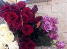 růže prostě miluji 2 (88 pieces) Lidl, Jigsaw Puzzles, Roses, Flowers, Plants, Pink, Rose, Puzzle Games, Plant