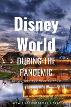 Everything you need to know about planning a Disney vacation. First hand knowledge from a pro Disney On A Budget, Disney Vacation Planning, Disney World Planning, Walt Disney World Vacations, Best Vacations, Disney Parks, Disney Wonder Cruise, Disney Cruise Line, Budget Travel
