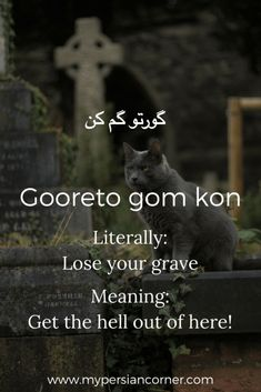 11 beautiful words to make you fall in love with the persian from words that sound nice to hilarious expressions these are 11 of my favorite persian stopboris Choice Image