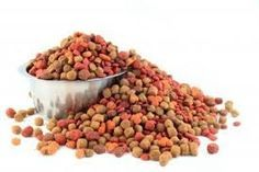 Best Dog Food For Labs With Ear Infections – Did you know you can help combat ear infections in dogs by choosing the proper dog food? It's true! Give your dog good ear health with good Best Dog Food, Best Dogs, Allergies Alimentaires, Food Manufacturing, Les Croquettes, Food Recalls, Dog Cookies, Homemade Dog Treats, Food Safety