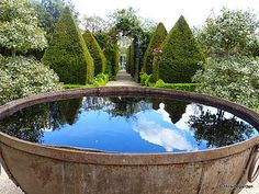 Water feature/reflecting pool with topiary at Hillside garden on Bloglovin