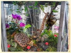 Fairy garden...made with love