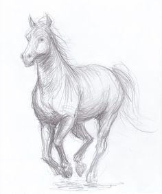 Horse drawing  original pencil drawing OOAK by arrabeska on Etsy, $35.00