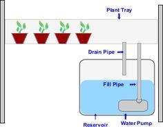 How to Build a Homemade Hydroponics System via www.wikiHow.com