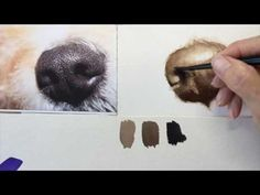 dog learning,dog tips,dog care,teach your dog,dog training Painting Fur, Painting & Drawing, Watercolor Paintings, Watercolour, Animal Paintings, Animal Drawings, Dog Drawing Tutorial, Realistic Eye Drawing, Drawing Eyes