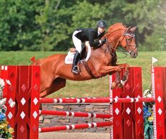 """breathedreamride: """" Getting closer to WEF I'm so excited I could burst """""""