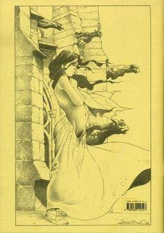 Verso de La esmeralda -HS- La Esméralda interdite Stalner, Jean-Marc Editions Point Image - JVDH