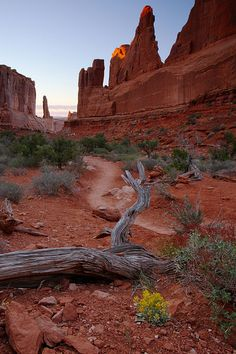 ~ Courthouse Towers ~ Arches National Park, Utah....