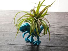 Air Plant T Rex Kit from Air Plant Design Studio. #bigheadlittlearms