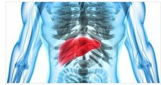 Your liver is a master at multitasking: digestingfood, processing nutrients and removing toxins, says hepatologist