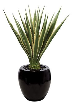 """A-81105 40"""" Plastic Agave Plant Green/Yellow Artificial Cactus, Agave Plant, Modern Landscaping, Vines, Palm, Tropical, Plastic, Landscape, Yellow"""