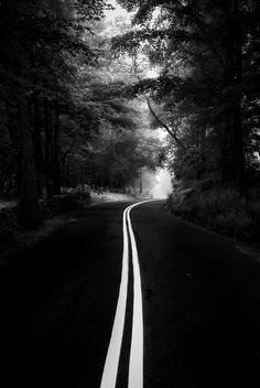 Black and White | The lines on the road leads your eyes all the way down the road.