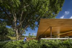 Galería de Residencia RN / Jacobsen Arquitetura - 14