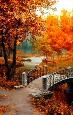 Beautiful colours of autumn