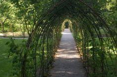 Woodstock Gardens and Arboretum, Inistioge, Kilkenny, Ireland