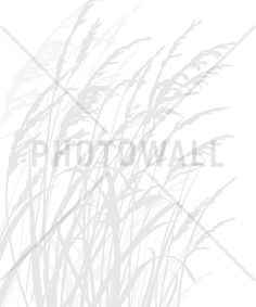 Grass - Light Grey - Tapetit / tapetti - Photowall