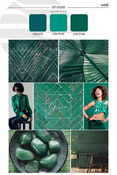Top ColorWall™ Colors of All Time | Green – eColorWorld Season Colors, Color Trends, Hue, All About Time, Green, Tops, Shell Tops