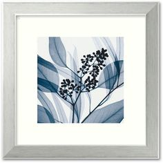Eucalyptus I Framed Art Print by Steven N. Meyers (250 BAM) ❤ liked on Polyvore featuring home, home decor, wall art, multicolor, framed wall art, colorful home decor and colorful wall art