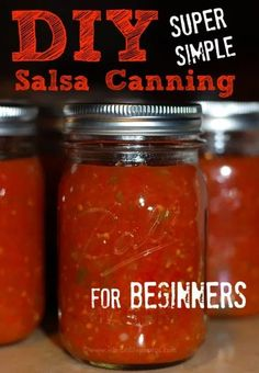 DIY Salsa Canning for Beginners: Use Up Ripe Tomatoes - DIY Salsa Canning for Beginners, using Ball Canning jars. Sharing 3 different methods and lots of helpful tips and time saving tricks! Salsa Canning Recipes, Canning Salsa, Canning Tips, Canning Tomatoes, Home Canning, Garden Tomatoes, Easy Canning, Fresh Tomato Salsa Recipe For Canning, Pineapple Salsa Canning Recipe